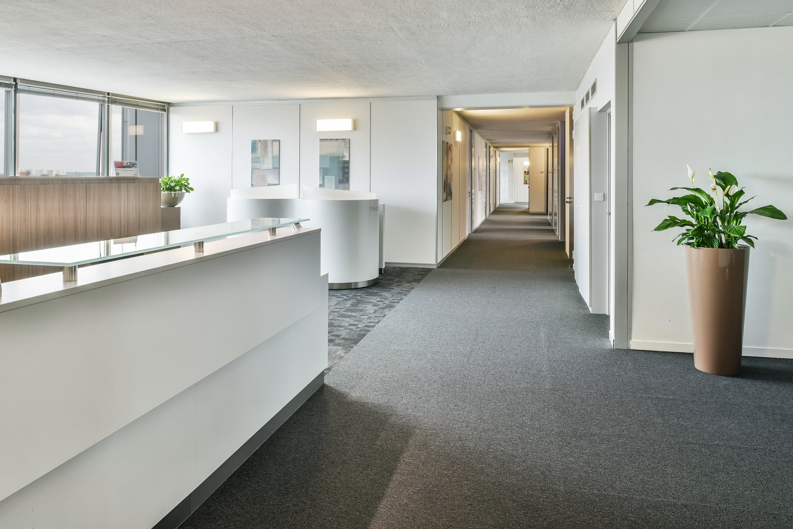 Meeting rooms and common areas
